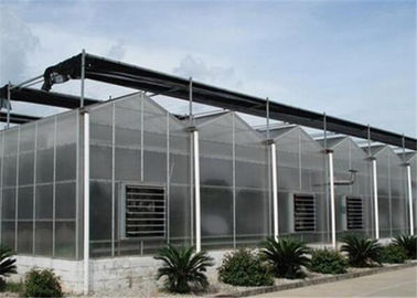China 50 Micron UV Thickness Polycarbonate Greenhouse High Light Transmission supplier