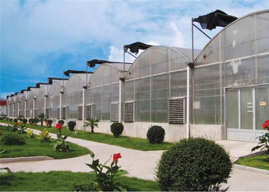 China Eco Friendly Plastic Garden Greenhouse Galvanized Steel Tube Frame Structure supplier