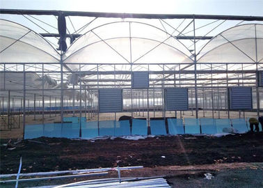 China Large Plastic Cover Greenhouse Hot Galvanized Skeleton With Strong Ventilation Ability supplier