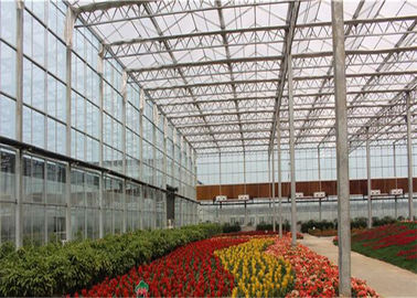 China 8m*4m Size Garden Glass Greenhouse Good Sealing Performance For Livestock supplier