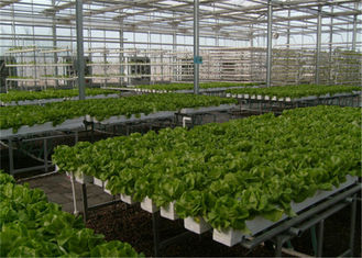 China Good Ventilation Greenhouse Rolling Benches , Greenhouse Seedbed System 1.2 - 5.0mm Diameter supplier