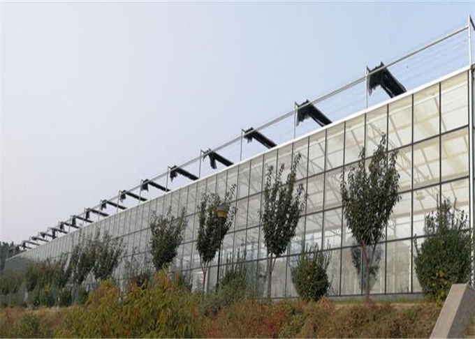 Modern Design Agricultural Glass Greenhouse 3m - 6m Side Height Long Service Life