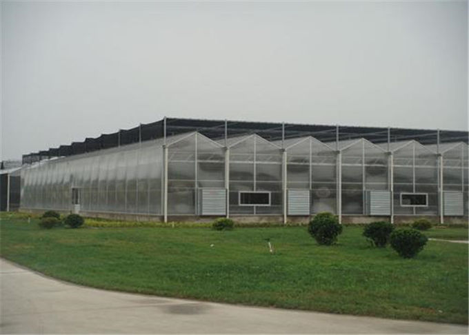 50 Micron UV Thickness Polycarbonate Greenhouse High Light Transmission