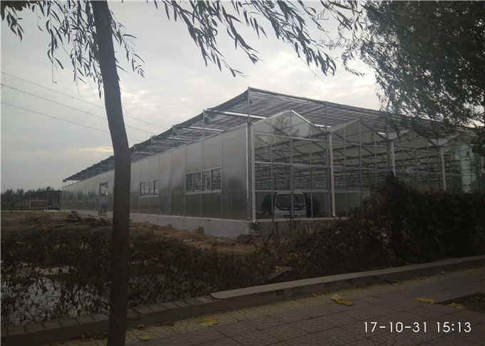 Smooth Visual Appearance PC Sheet Greenhouse Low Heating Energy Consumption