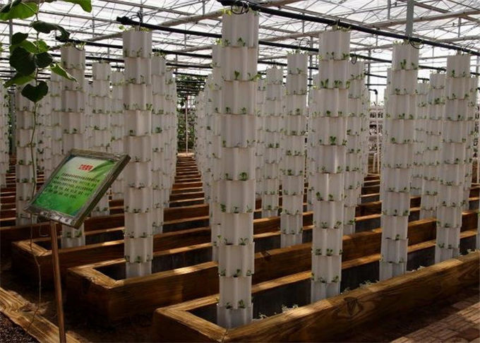 Plastic Film Hydroponic Greenhouse Strong Ventilation Ability Convenient To Use